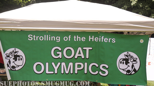 Goat Olympics, Strolling of the Heifers
